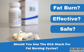 Eca Stack Dosage Chart Should You Use The Eca Stack For Bodybuilding Fat Burning
