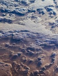 S Cool Cloud Identification Chart The Sky And Dichotomous Key Activity Nasa Jpl Edu