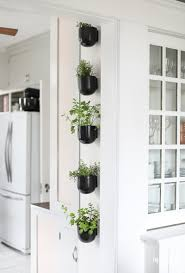 Garden To Kitchen Modern Kitchen Herb Garden Inspired By Charm