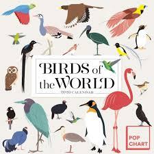 Birds Pop Chart 2020 Wall Calendar