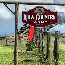 Pumpkin Patch | Kula <b>Country Farms</b>