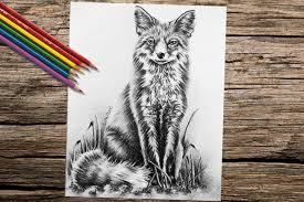 Small Picture Fox Animal coloring book page adult coloring book coloring