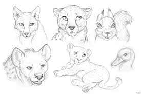 Free Drawings Of Animals Download Free Clip Art Free Clip