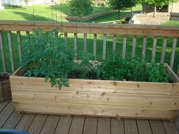 deck garden with deck gardening ideas