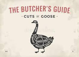 Butcher Diagram Scheme Elk Stock Vector Illustration Of
