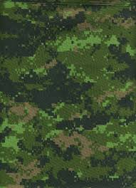 Camo Patterns Amazing Multiscale Camouflage Wikipedia