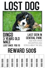 View Preview Lost Dog Poster Template Reward Missing Pet Uk Flyer