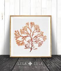 coral print beach wall art decor coral illustration coastal decor wall art  on beach themed wall art nz with coral print beach wall art decor coral illustration coastal decor