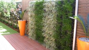 Small Picture DIY Vertical Garden Systems vertical green wall 1 looking at