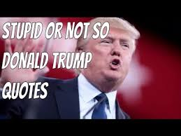 Stupid Trump Quotes Delectable Donald Trump Funny Quotes YouTube