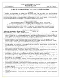 Sample Risk Management Resume Elegant Risk Management Resume Samples Risk Management Resume 1