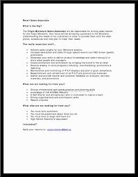 Entrepreneur Job Description For Resume Retail Sales Associate Job Description Resume Amazing Shoe Co 54