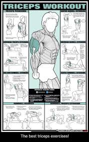 tricep workouts free weights health fzl99