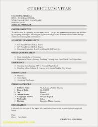 Wordpad Resume Template Examples New Cv Format Sample
