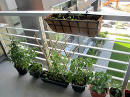 diy how to plant a personal garden in a small urban space inhabitat green design innovation architecture green building