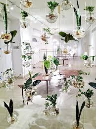 indoor garden ideas 1 hanging garden idea