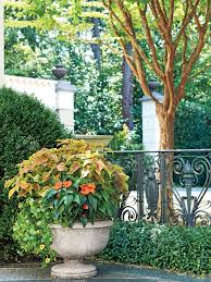 Save on planters and more. 125 Container Gardening Ideas Southern Living