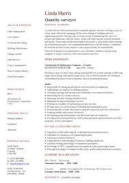 Plumber Resume Delectable Construction CV Template Job Description CV Writing Building