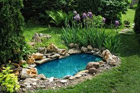 Small Picture Small Natural Pond In An Amazing Backyard Garden Artenzo