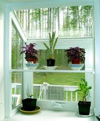 Decorating within indoor plants green