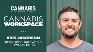 How Hawaiian Ethos' Kris Jacobson Works: Cannabis Workspace - Cannabis  Business Times