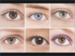 most flattering eye makeup for your eye shape eye makeup for diffe eye shapes