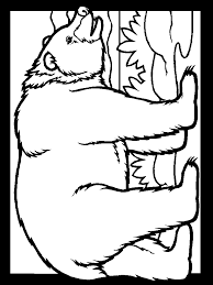 bears color bear s coloring pages