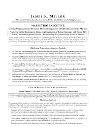 Example Of Executive Resume Custom Marketing Executive Resume Example EssayMafia