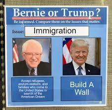 Bernie or Trump Meme Template