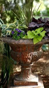 Small Picture 342 best Shade Container Gardening images on Pinterest Potted