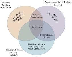 Venn Diagram Bioinformatics Integrating Various Bioinformatic Analyses Venn Diagram