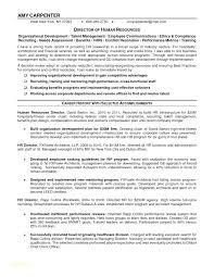Summary Resume Example Executive Summary Resume Example Template Joefitnessstore Com
