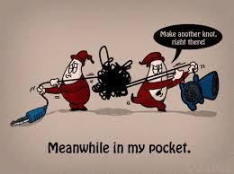 Image result for pickmeupnews.com