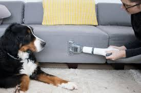 vacuums for cleaning pet fur