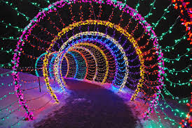Wps Garden Of Lights Garden Of Lights At Green Bay Botanical Garden 2019 In