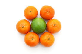 Image result for fruits