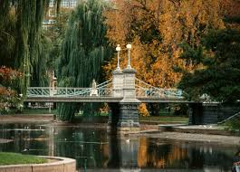 public garden creativecommons org licenses by sa 3 0