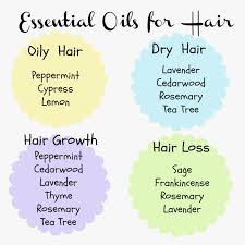 oily hair diy essential oil shampoo and conditioner essentials oil and diy