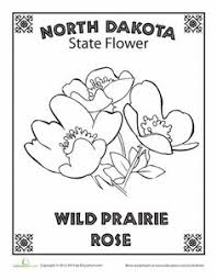 Small Picture North Dakota State Quarter Coloring Page USA State Quarters