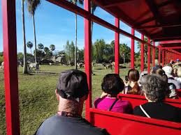 busch gardens serengeti safari. Busch Gardens Florida Tampa Bay: Shows, Thrills \u0026 Safari Experience! \u2013 Singapore\u0027s Top (few) Travel Blog: | Food Fun! Serengeti D