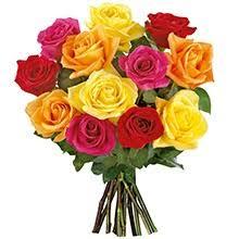 Resultado de imagem para rosas de  niver