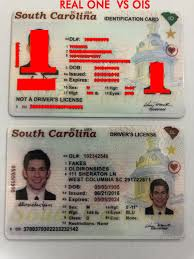 Fake Old Sides Iron Carolina new – Sc South