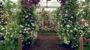 Chelsea Flower Show 2017: Alan Titchmarsh hails the \u0027height of ...