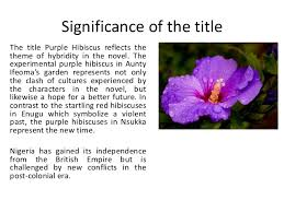 purple hibiscus 4 significance of the title the title purple hibiscus