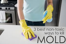 how to kill bathroom mold. 3 Non-toxic Ways To Clean Mold Using All-Natural Cleaners - Cleaning Tips From The Maids How Kill Bathroom
