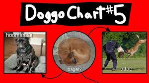 Doggo Chart Part 5