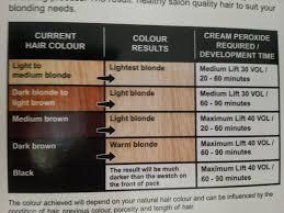 Bleach Hair Time Chart 28 Albums Of How Long To Leave Bleach In Hair 40 Vol