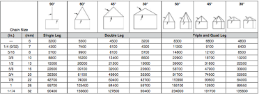 Chain Sling Chart Grade 100 Chain Sling Components