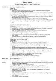 Clinical Nurse Manager Resume Samples Velvet Jobs Assistant Examples