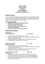 Abilities In Cv Rome Fontanacountryinn Com